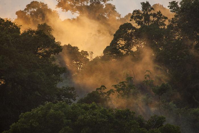 habitat-brazil4