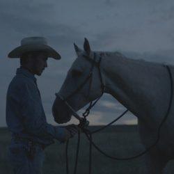 The Rider (15)