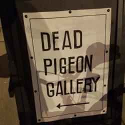 Dead Pigeon Gallery