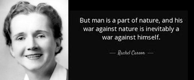 Rachel Carson: The Non-human Perspective