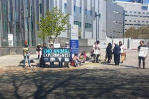 Vivisection Exposed: Painful Animal Experiments at Liverpool University